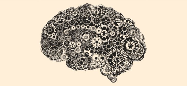 brain-illustration-1940x900_35269